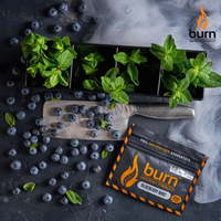Табак BURN 25 г Blueberry Mint (Черника с Мятой)